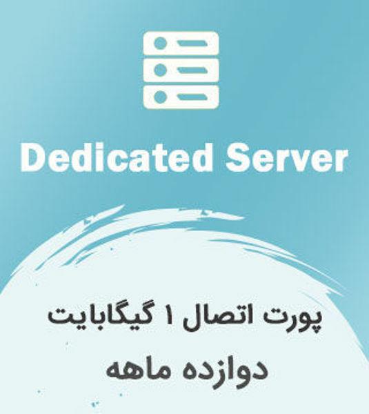 تصویر از میزبانی سرور، پورت اتصال 1 گیگابایت دوازده ماهه در دیتاسنتر زیرساخت