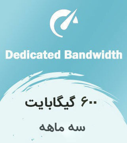 تصویر از اینترنت بیسیم اختصاصی سه ماهه با ترافیک 600 گیگابایت بین الملل