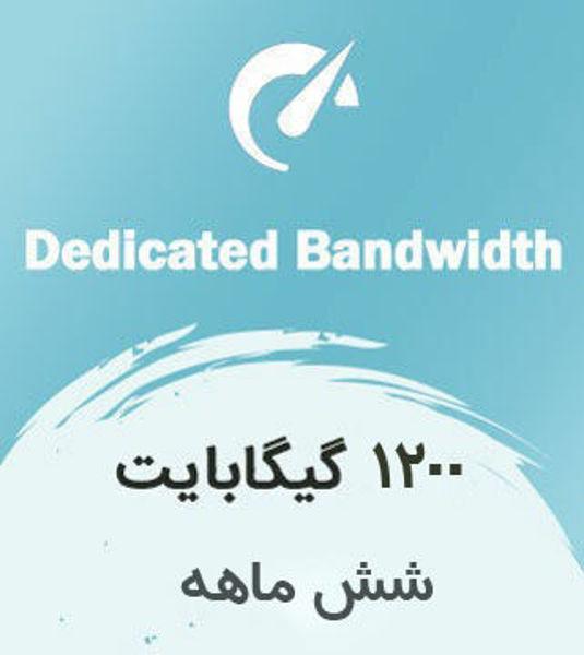 تصویر از اینترنت بیسیم اختصاصی شش ماهه با ترافیک  1200 گیگابایت بین الملل